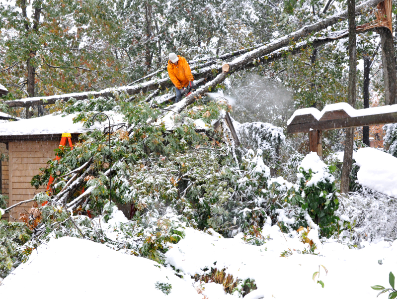 Preparing Your Home and Roof For a Winter Storm