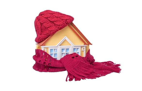 winter insulation - wow.jpg